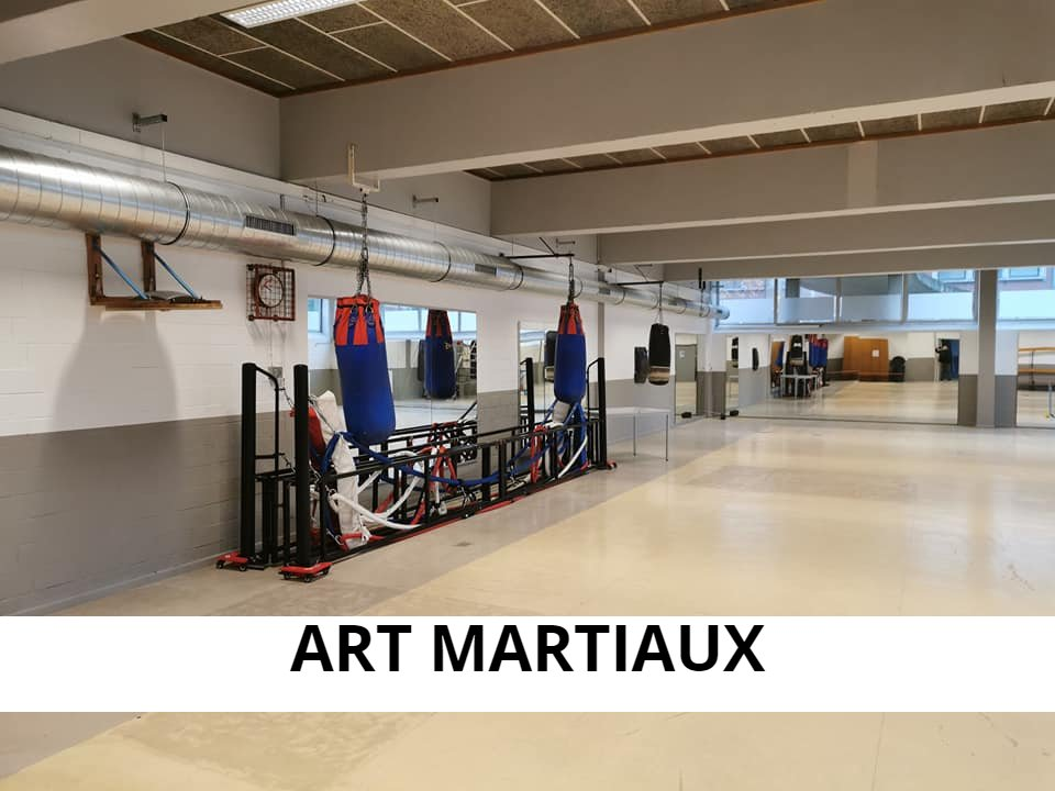 ART MARTIAUX